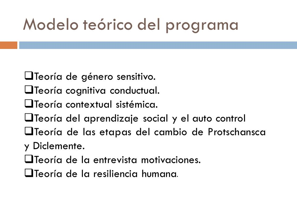 Modelo teórico del programa