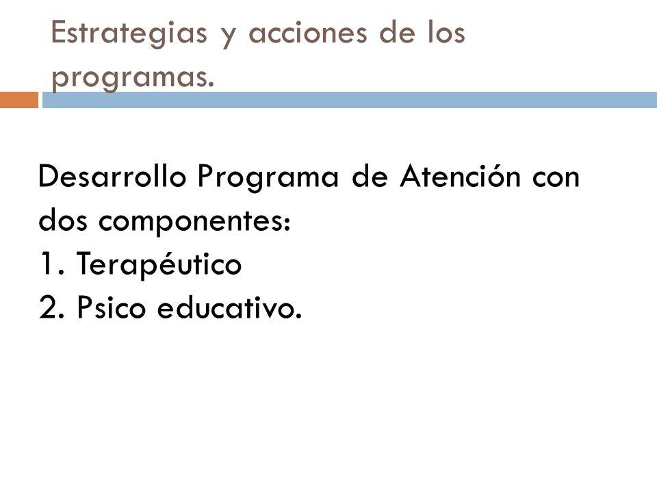 Estrategias y acciones de los programas.