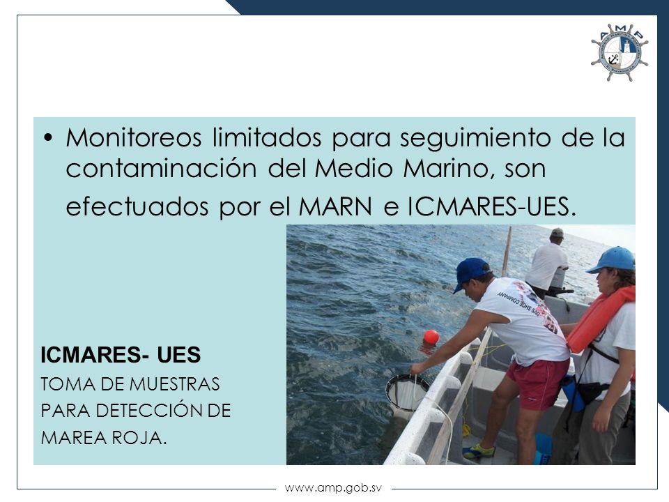 Monitoreos limitados para seguimiento de la contaminación del Medio Marino, son efectuados por el MARN e ICMARES-UES.