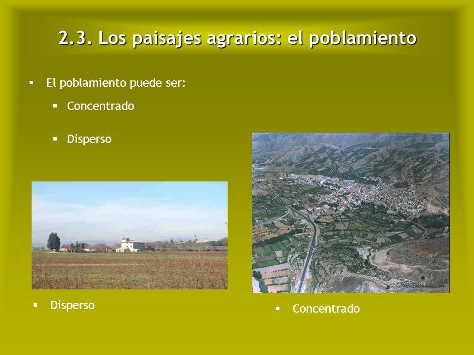 2.3. Los paisajes agrarios: el poblamiento