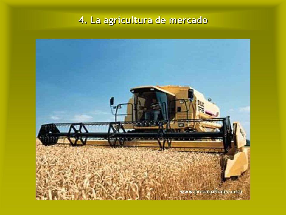 4. La agricultura de mercado