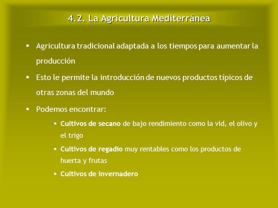 4.2. La Agricultura Mediterránea