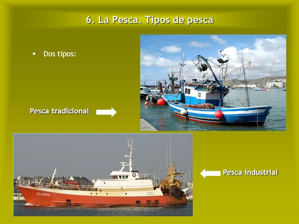 6. La Pesca. Tipos de pesca Dos tipos: Pesca tradicional