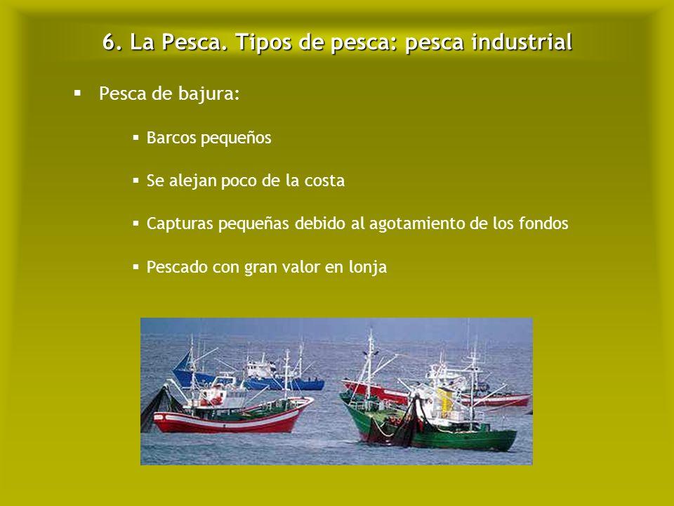 6. La Pesca. Tipos de pesca: pesca industrial