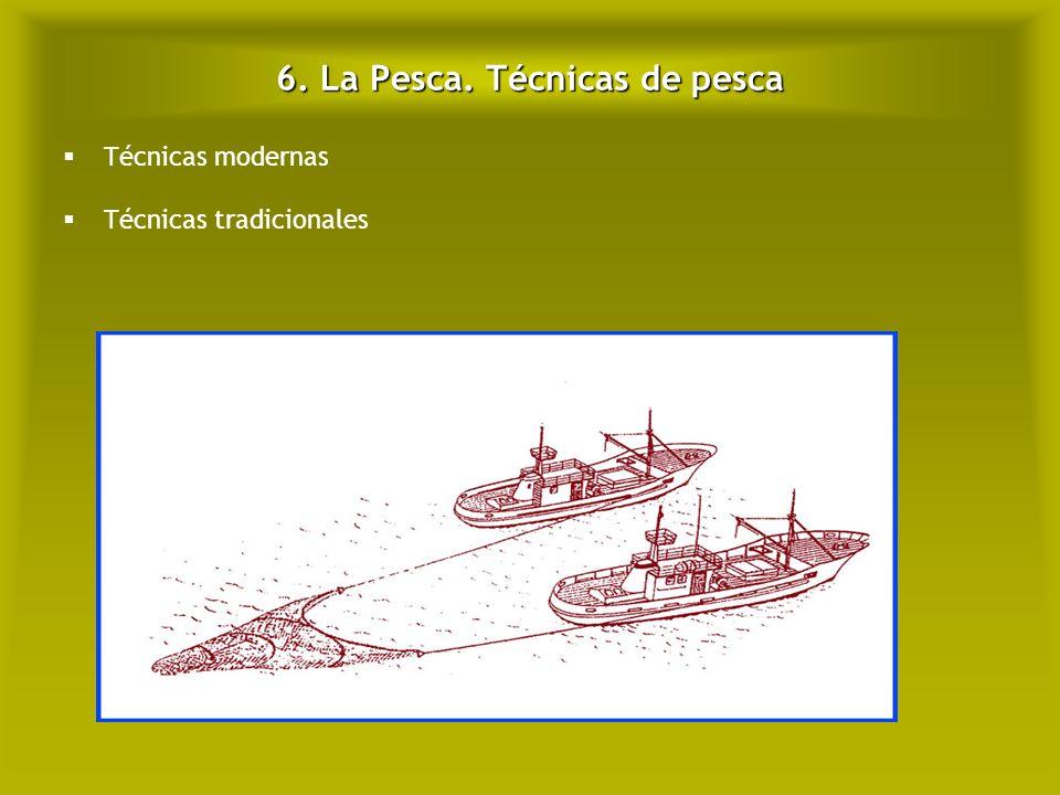 6. La Pesca. Técnicas de pesca
