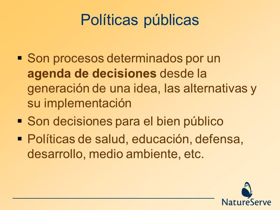 Políticas públicas Son procesos determinados por un agenda de decisiones desde la generación de una idea, las alternativas y su implementación.