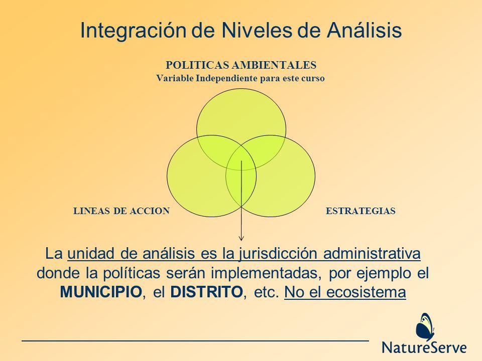 Integración de Niveles de Análisis