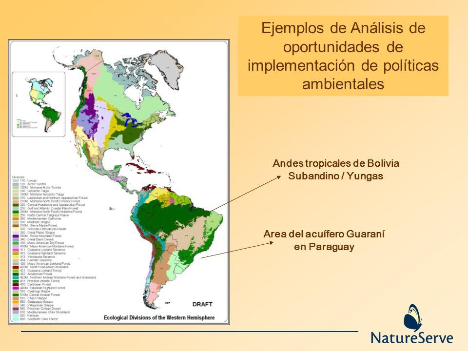 Andes tropicales de Bolivia Area del acuífero Guaraní