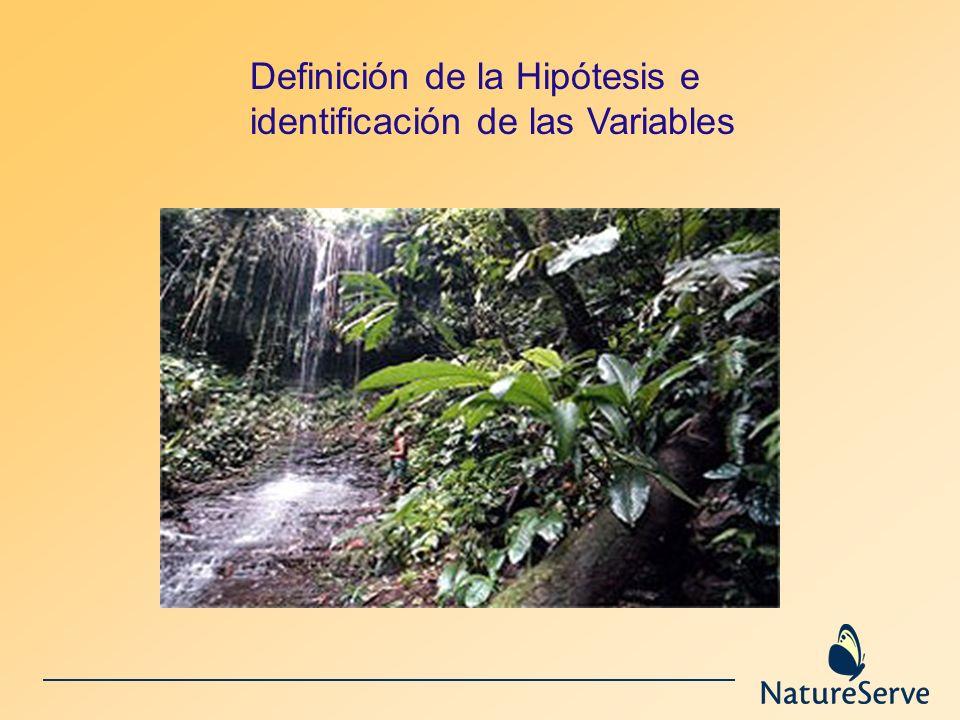 Definición de la Hipótesis e