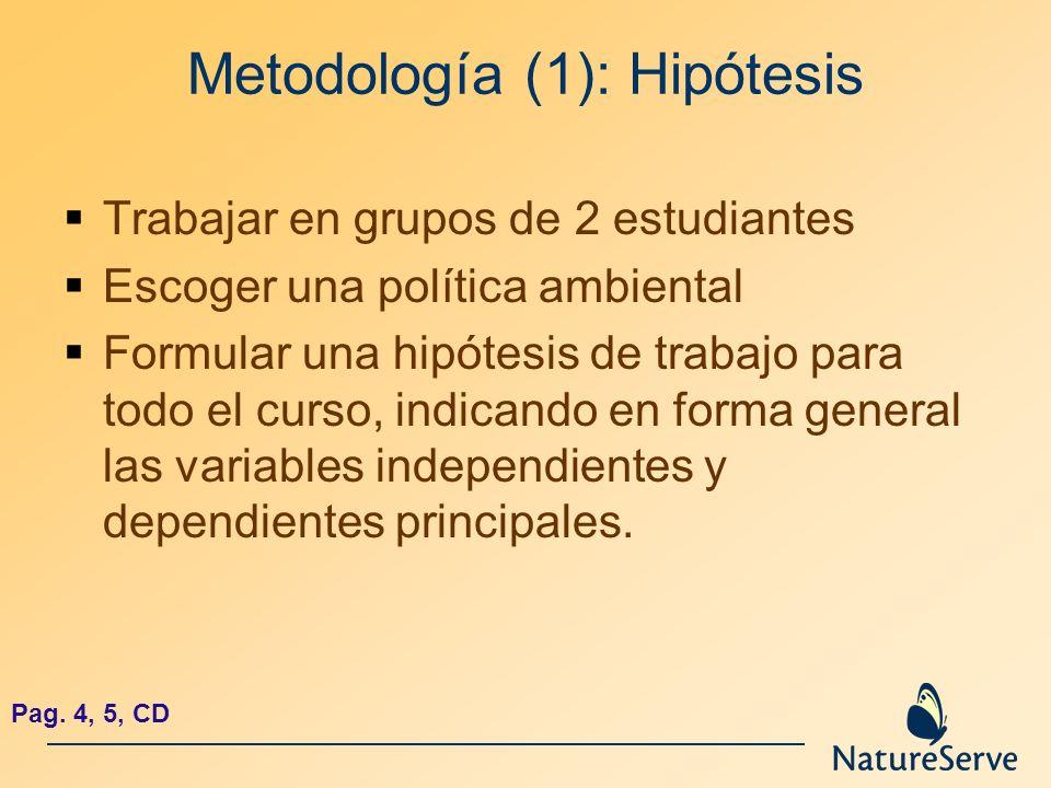 Metodología (1): Hipótesis