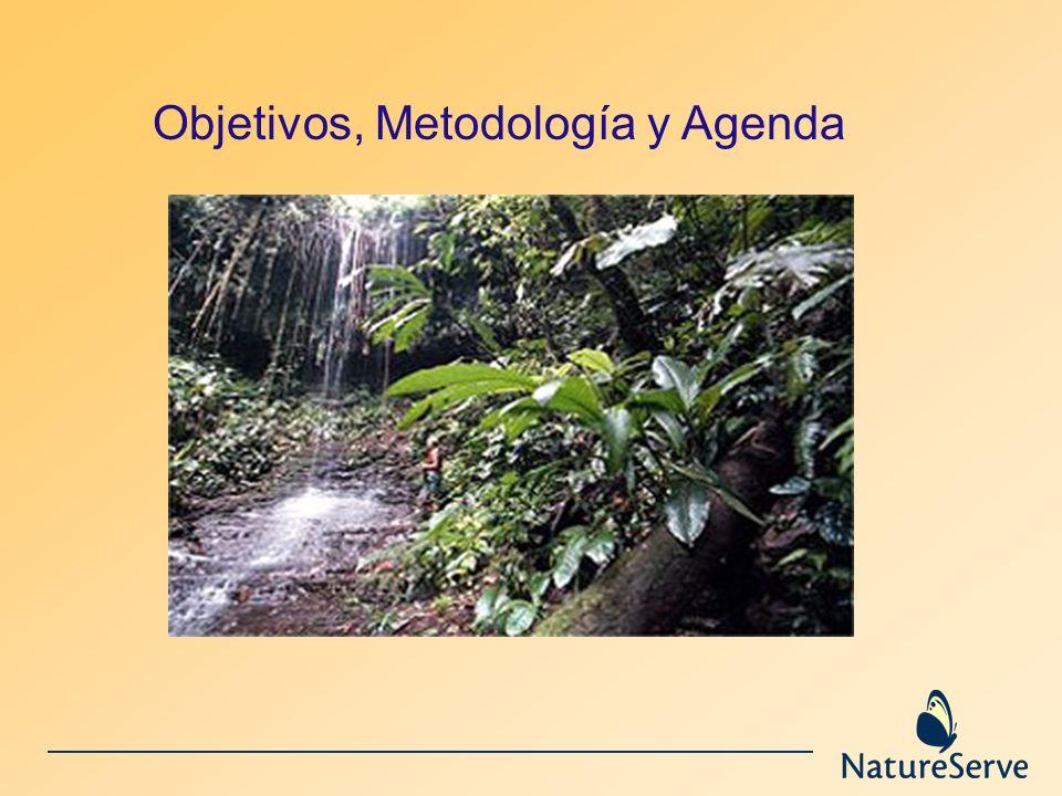 Objetivos, Metodología y Agenda