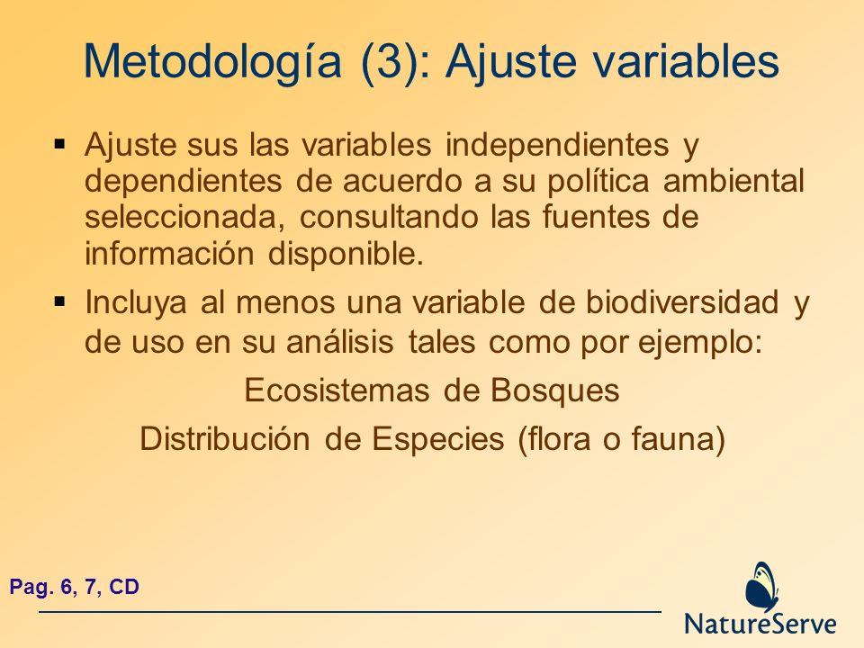 Metodología (3): Ajuste variables