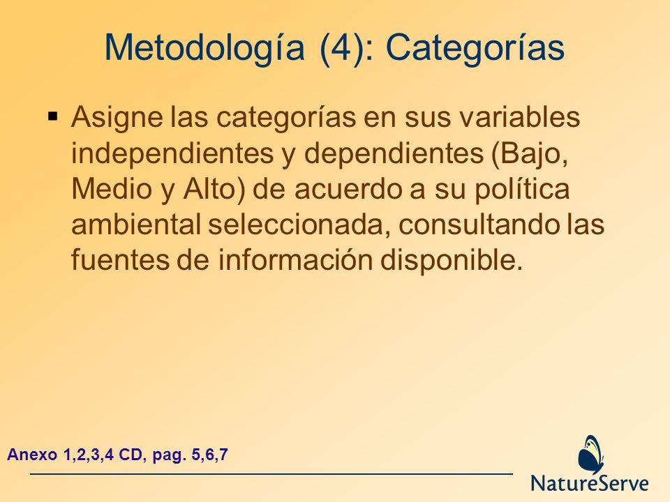 Metodología (4): Categorías