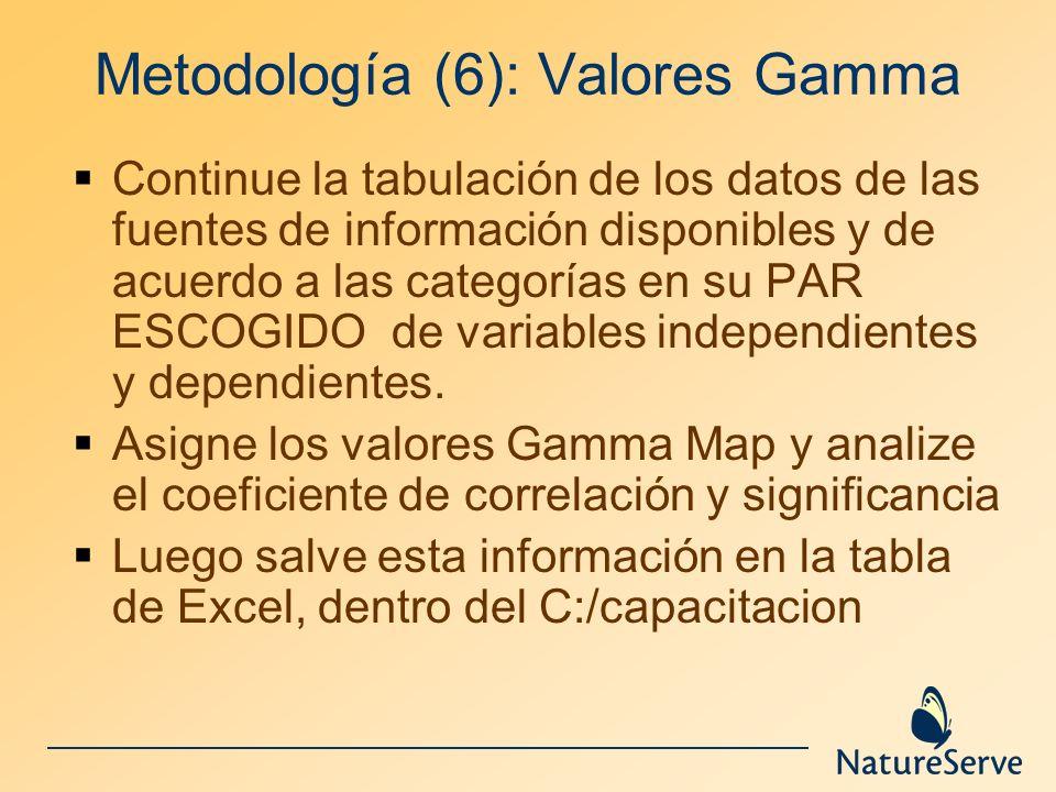 Metodología (6): Valores Gamma