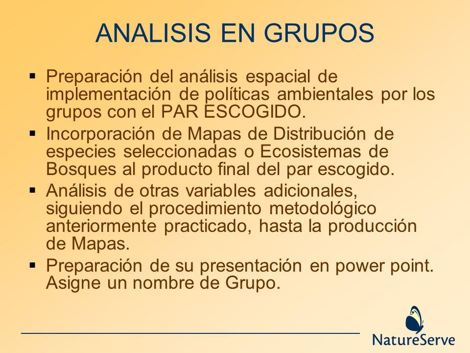 ANALISIS EN GRUPOSPreparación del análisis espacial de implementación de políticas ambientales por los grupos con el PAR ESCOGIDO.