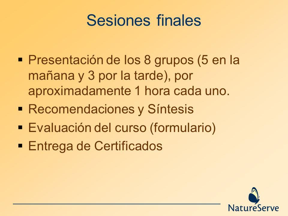 Sesiones finalesPresentación de los 8 grupos (5 en la mañana y 3 por la tarde), por aproximadamente 1 hora cada uno.