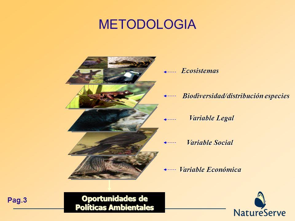 Oportunidades de Políticas Ambientales
