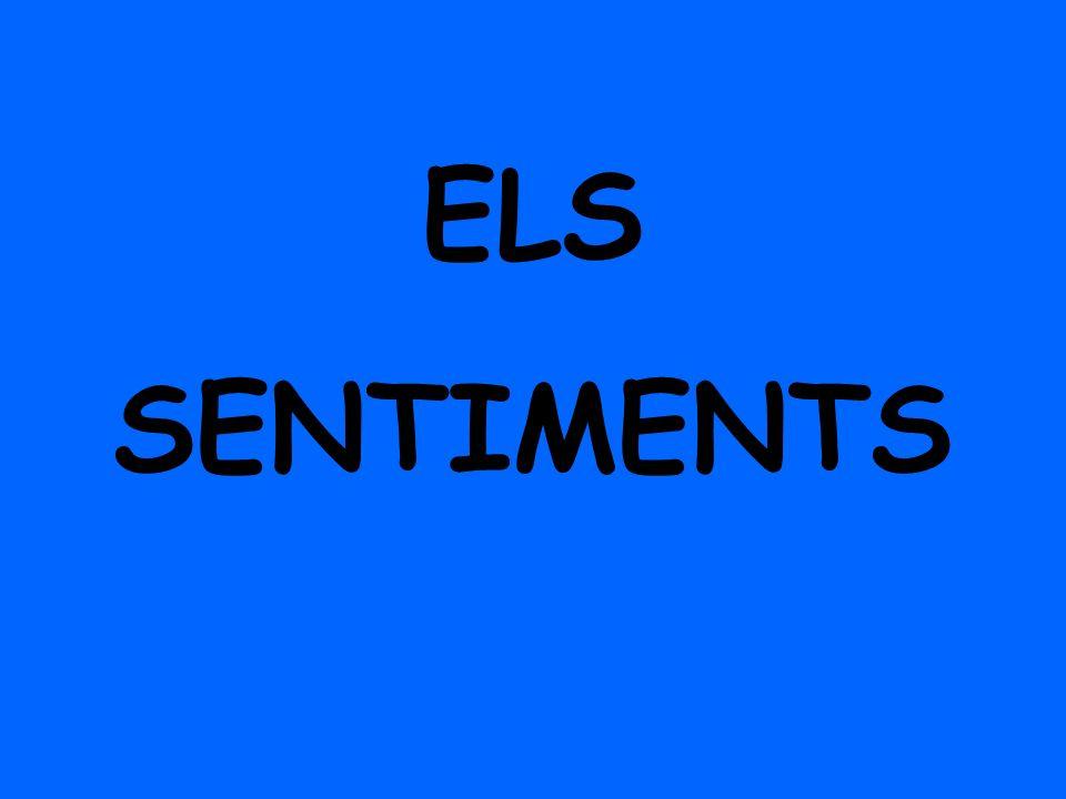 ELS SENTIMENTS