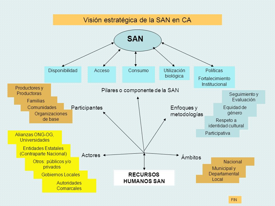 SAN Visión estratégica de la SAN en CA Pilares o componente de la SAN