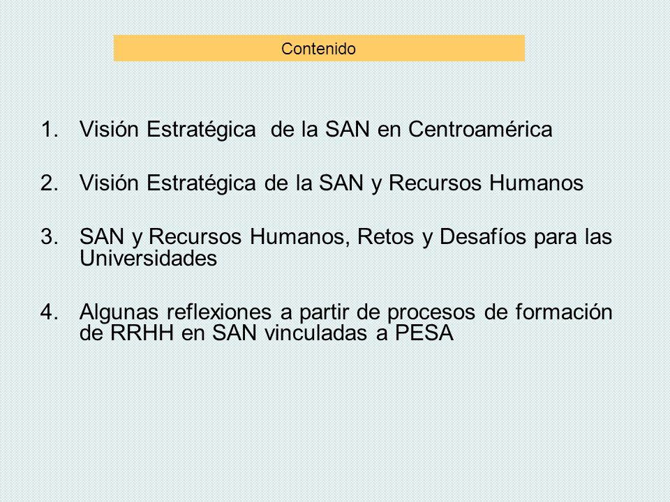 Visión Estratégica de la SAN en Centroamérica