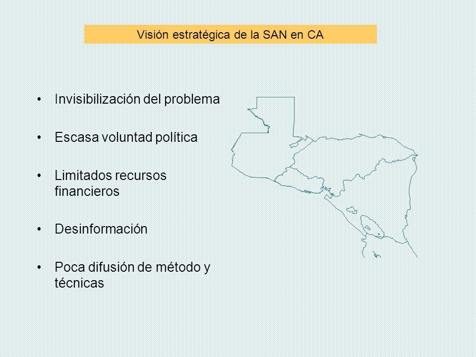 Visión estratégica de la SAN en CA