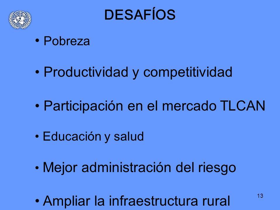 Productividad y competitividad Participación en el mercado TLCAN