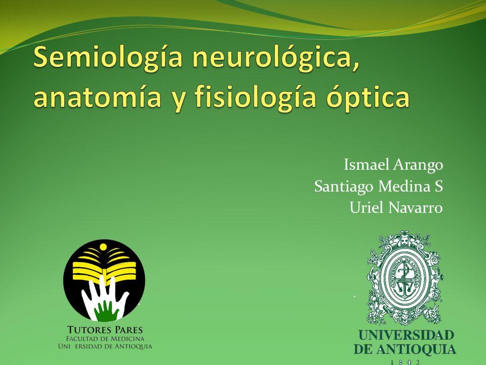 Semiología neurológica, anatomía y fisiología óptica - ppt video ...