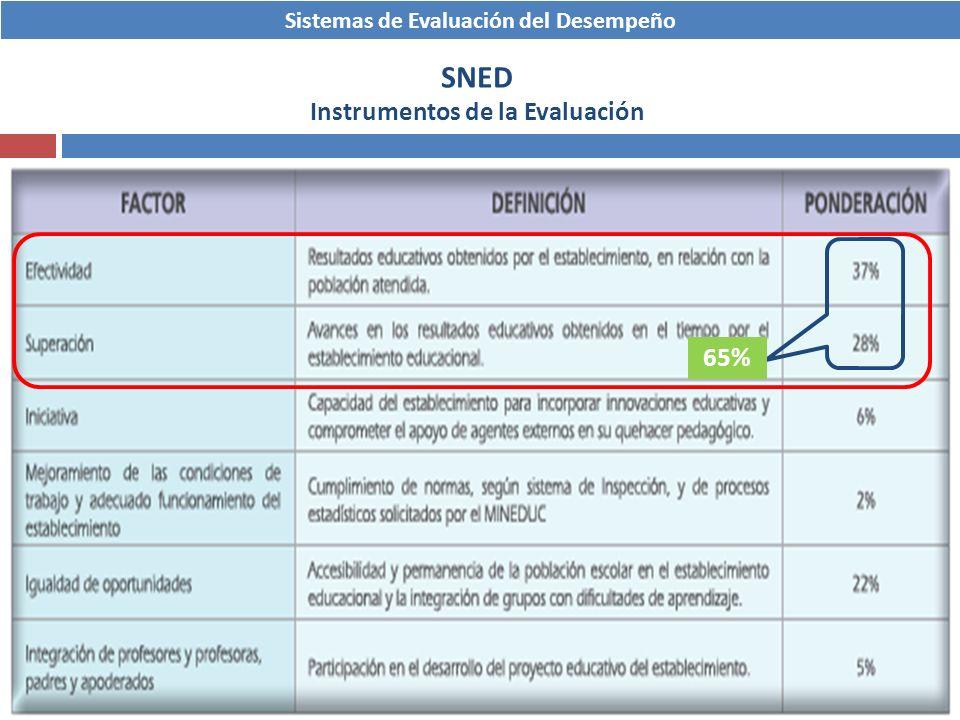 SNED Instrumentos de la Evaluación