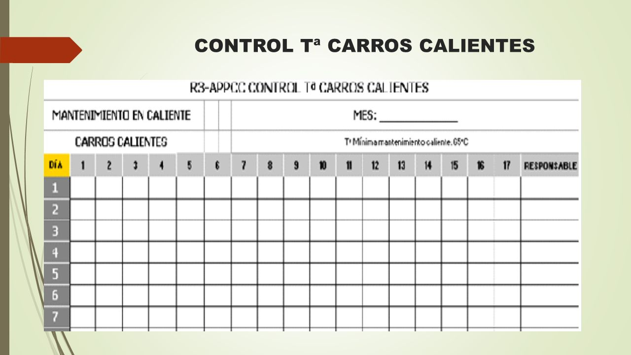 CONTROL Tª CARROS CALIENTES
