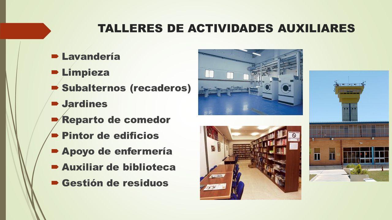 TALLERES DE ACTIVIDADES AUXILIARES