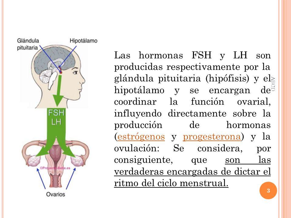 Famoso Aumentar La Función De La Glándula Pituitaria Imágenes ...