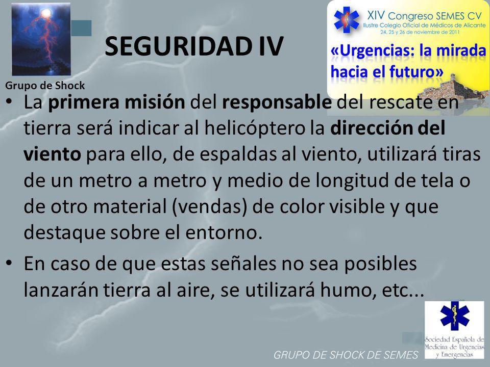 SEGURIDAD IV Grupo de Shock.