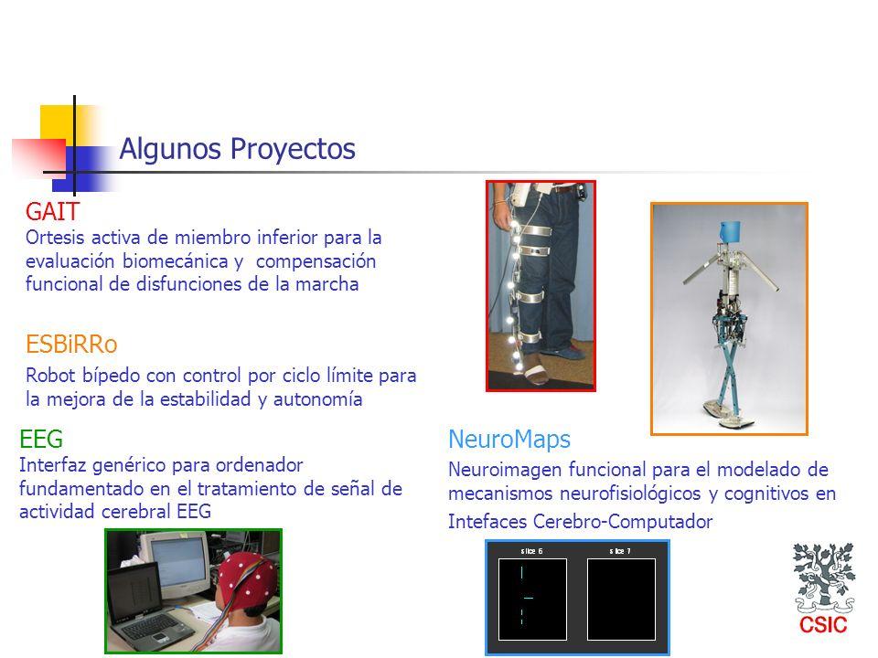 Algunos Proyectos GAIT ESBiRRo EEG NeuroMaps