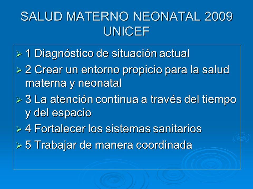 SALUD MATERNO NEONATAL 2009 UNICEF