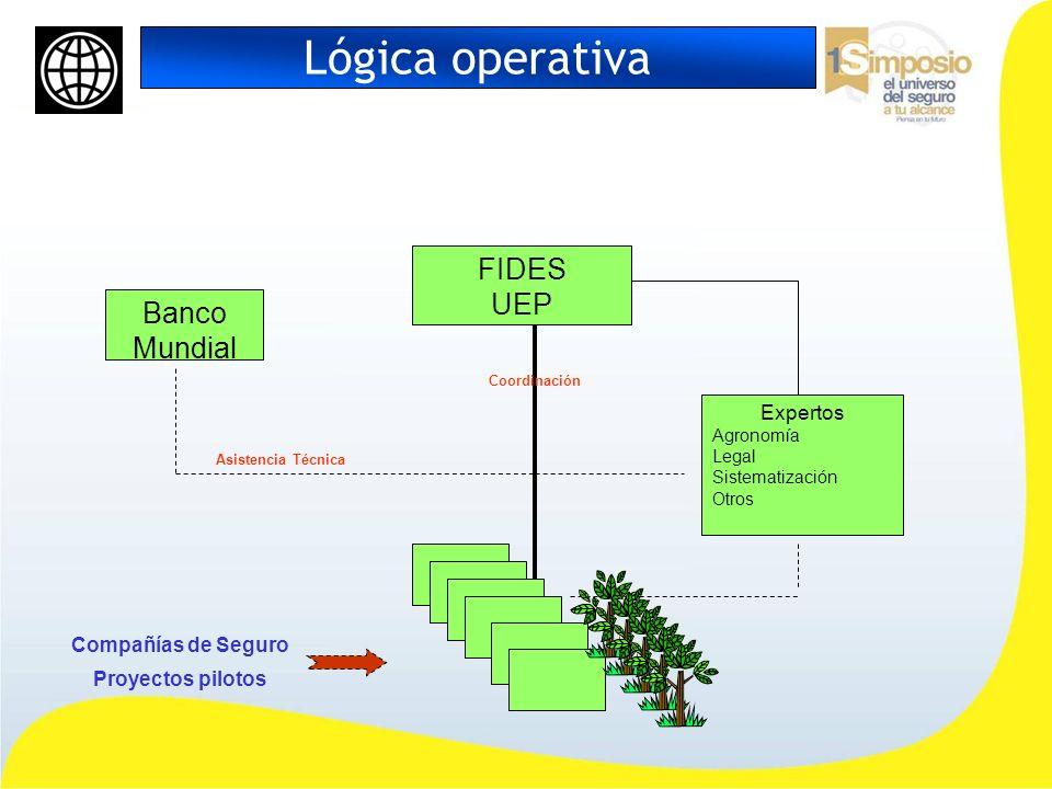 Lógica operativa FIDES UEP Banco Mundial Expertos Compañías de Seguro