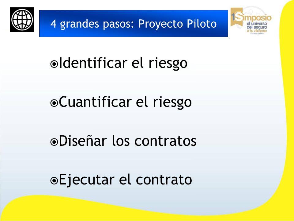 4 grandes pasos: Proyecto Piloto