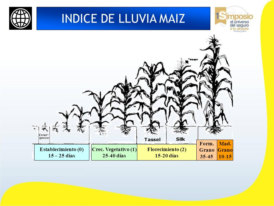 INDICE DE LLUVIA MAIZ Form. Grano 35-45 Mad. Grano 10-15