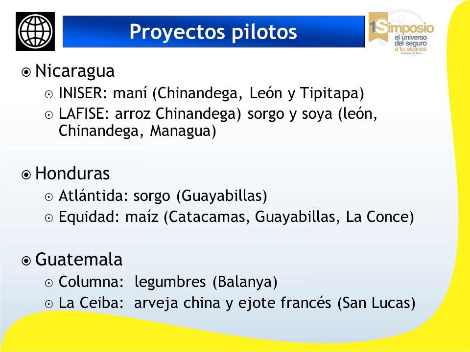 Proyectos pilotos Nicaragua Honduras Guatemala