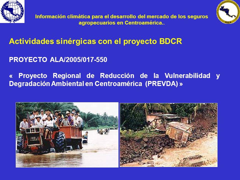 Actividades sinérgicas con el proyecto BDCR