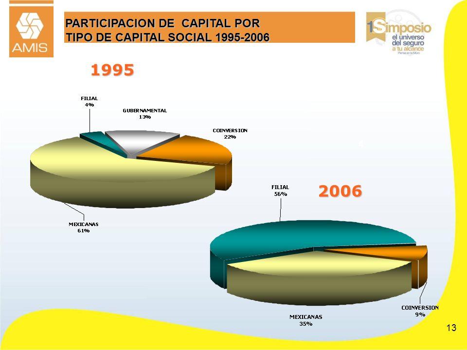 PARTICIPACION DE CAPITAL POR TIPO DE CAPITAL SOCIAL 1995-2006