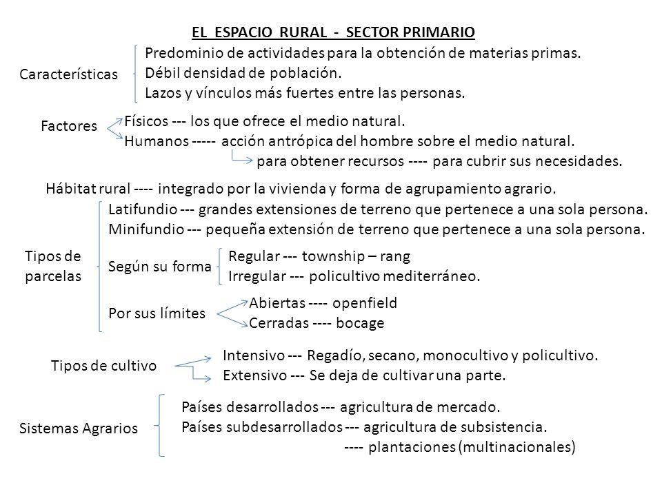 EL ESPACIO RURAL - SECTOR PRIMARIO