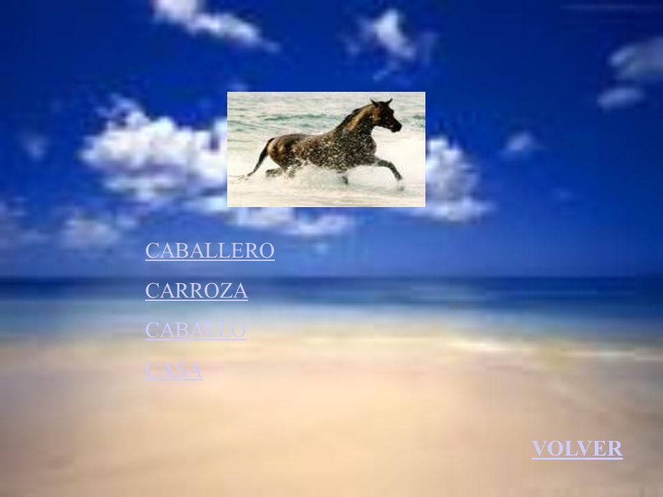 CABALLERO CARROZA CABALLO CASA VOLVER