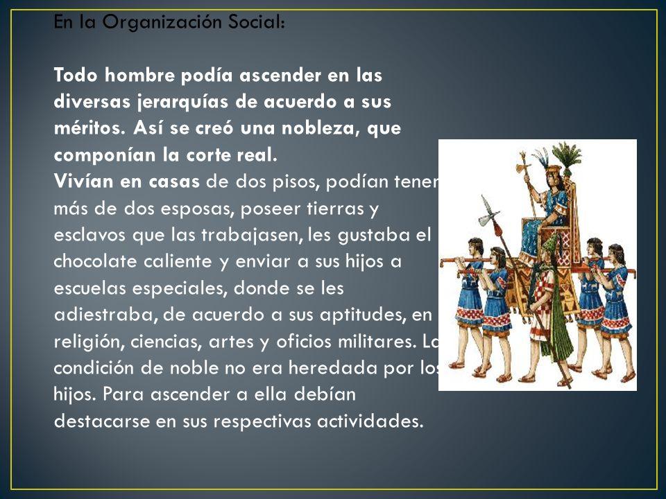 En la Organización Social: