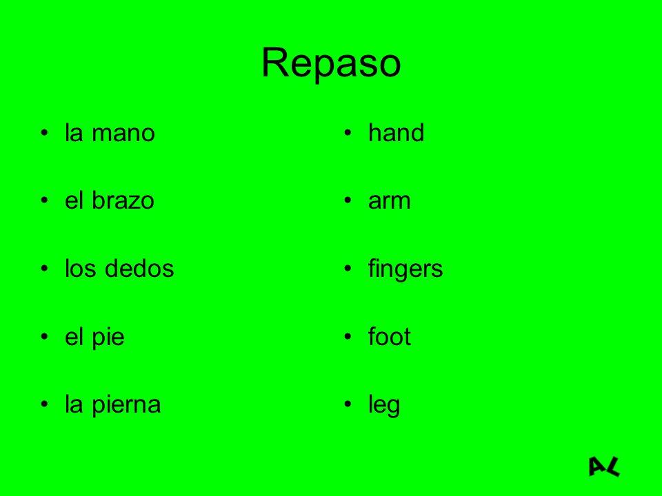 Repaso la mano el brazo los dedos el pie la pierna hand arm fingers