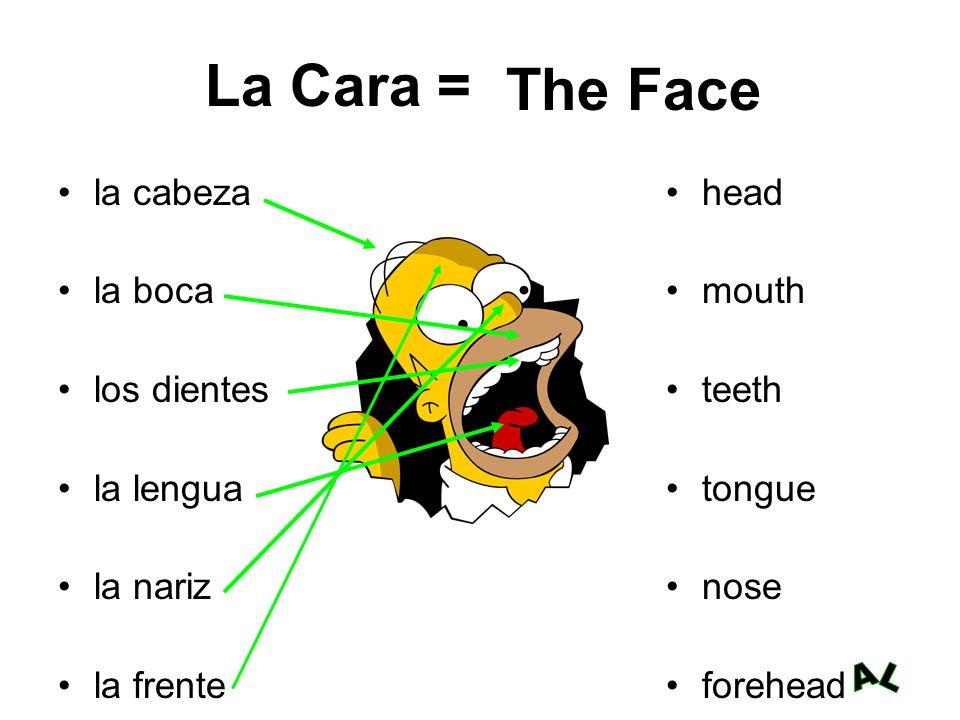 La Cara = The Face la cabeza la boca los dientes la lengua la nariz