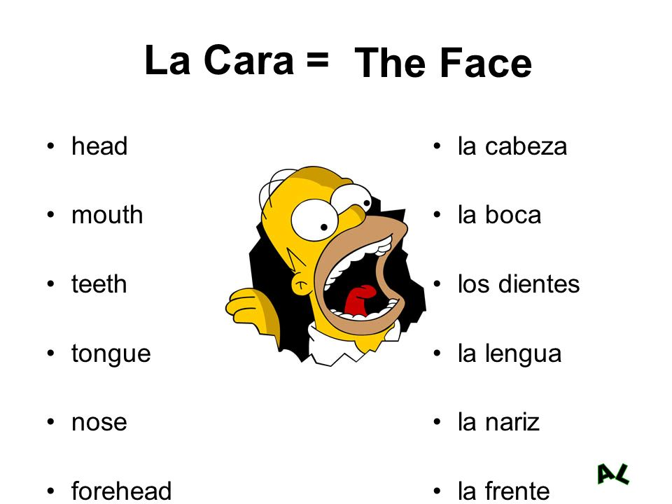 La Cara = The Face head mouth teeth tongue nose forehead la cabeza