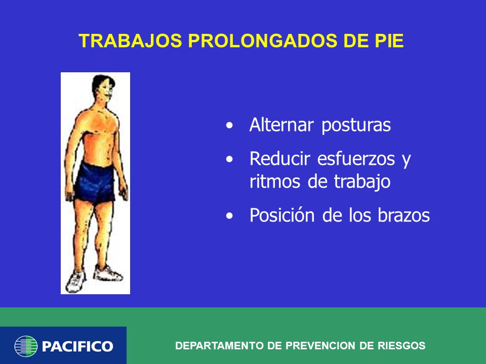 TRABAJOS PROLONGADOS DE PIE