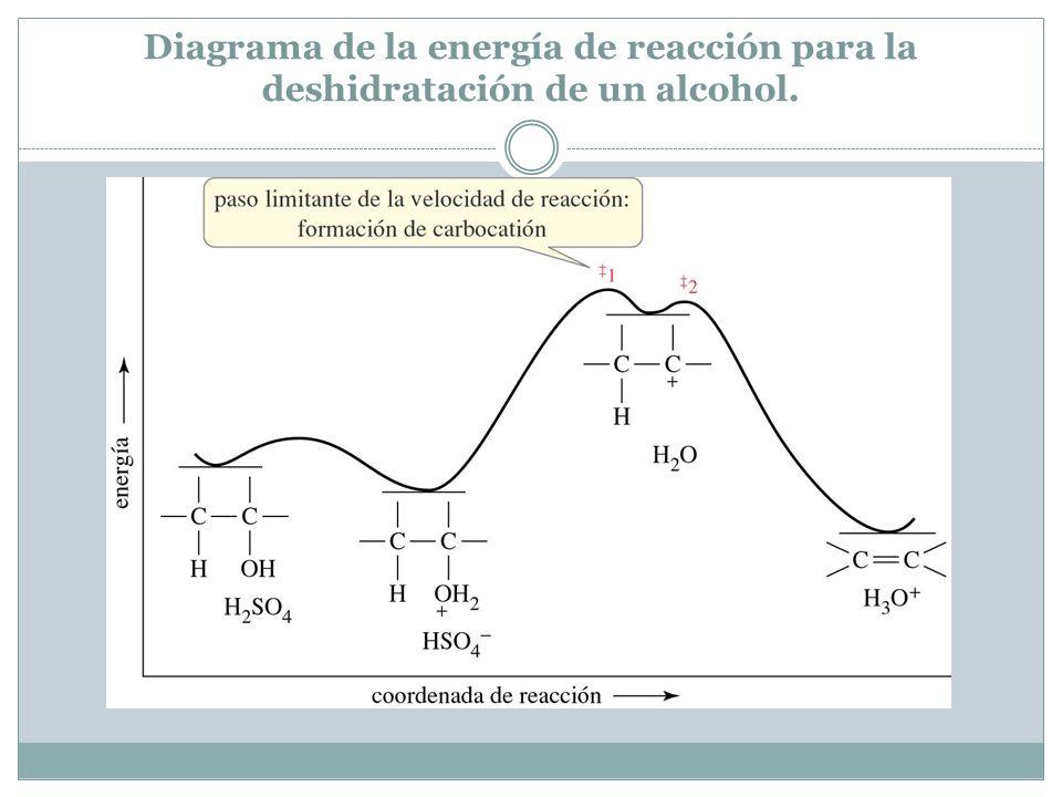 Diagrama de la energía de reacción para la deshidratación de un alcohol.