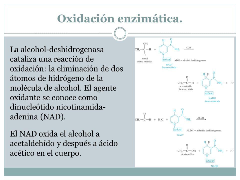 Oxidación enzimática.