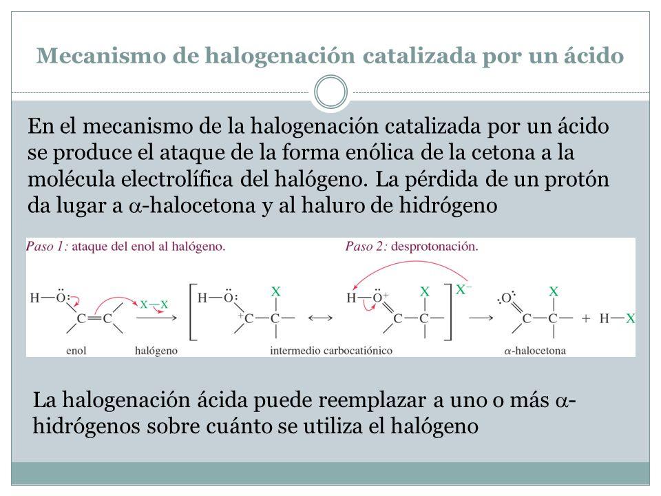 Mecanismo de halogenación catalizada por un ácido